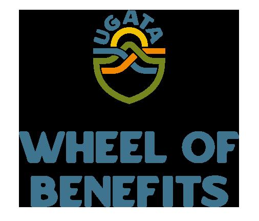 wheel-of-benefits-logo